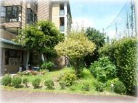 前庭風景の画像